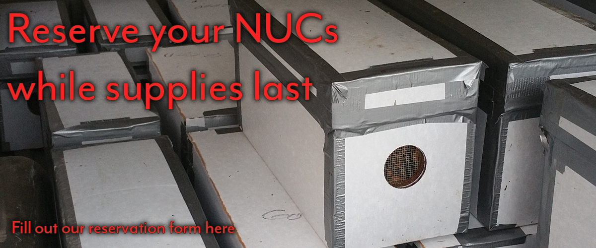NUC_reservation.pngBee NUCs
